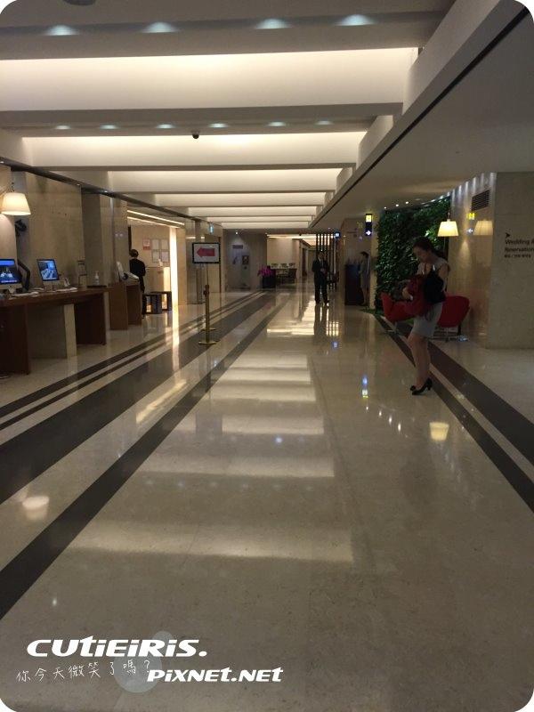 首爾∥韓國首爾明洞(명동)豐田酒店(HOTEL PJ ; 피제이호텔)距離近地鐵有兩條不壅擠 5 pj%20hotel%20%2827%29